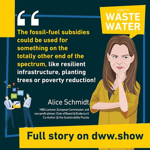 Fossil Fuel subsidies represented 420 Billion a year over the past decade. Can we do something more sustainable with this money? That's what Alice Schmidt asks.